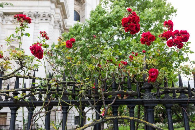 february-in-london